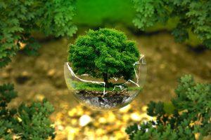 Reparatur ist Umweltschutz